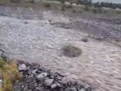 Rock Flows Like River in Terrible Gully, NZ
